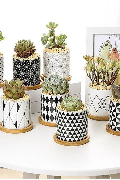 Brief Round Flower Pot Geometric Patterns Black White Succulents Planter Cactus Flower Pot Home Garden Decoration 4000223046709